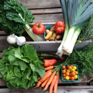 Whidbey CSA Farm Share