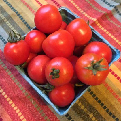 Organic, Non-GMO Tomato Seed