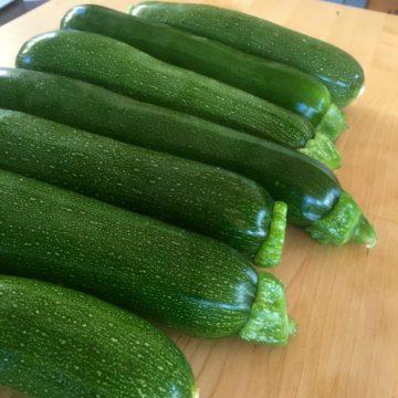 Summer Squash/ Zucchini Seeds