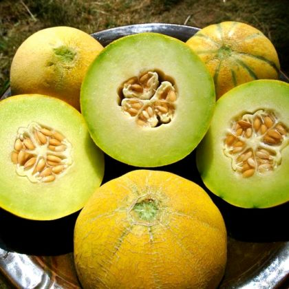Organic, Non-GMO Melon Seed