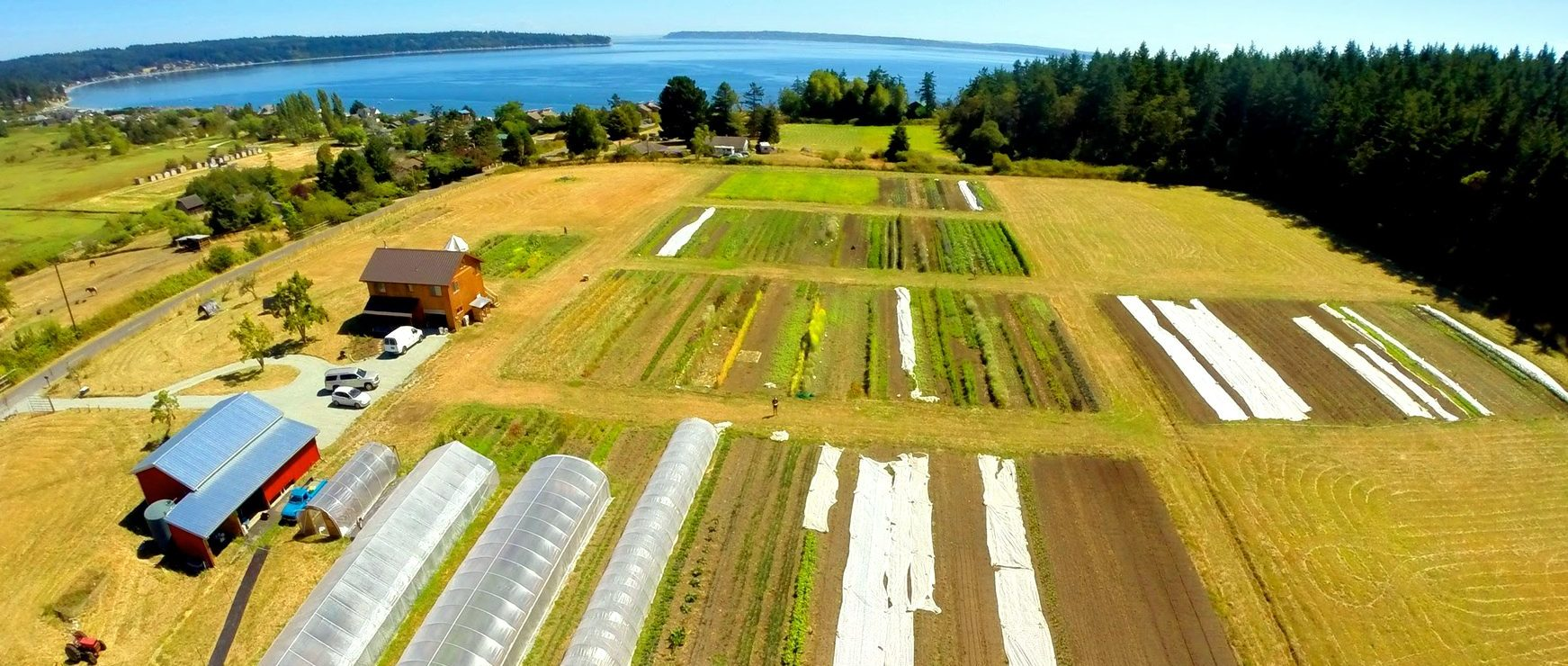 An image of Deep Harvest Farm that provides seeds to the northwest.
